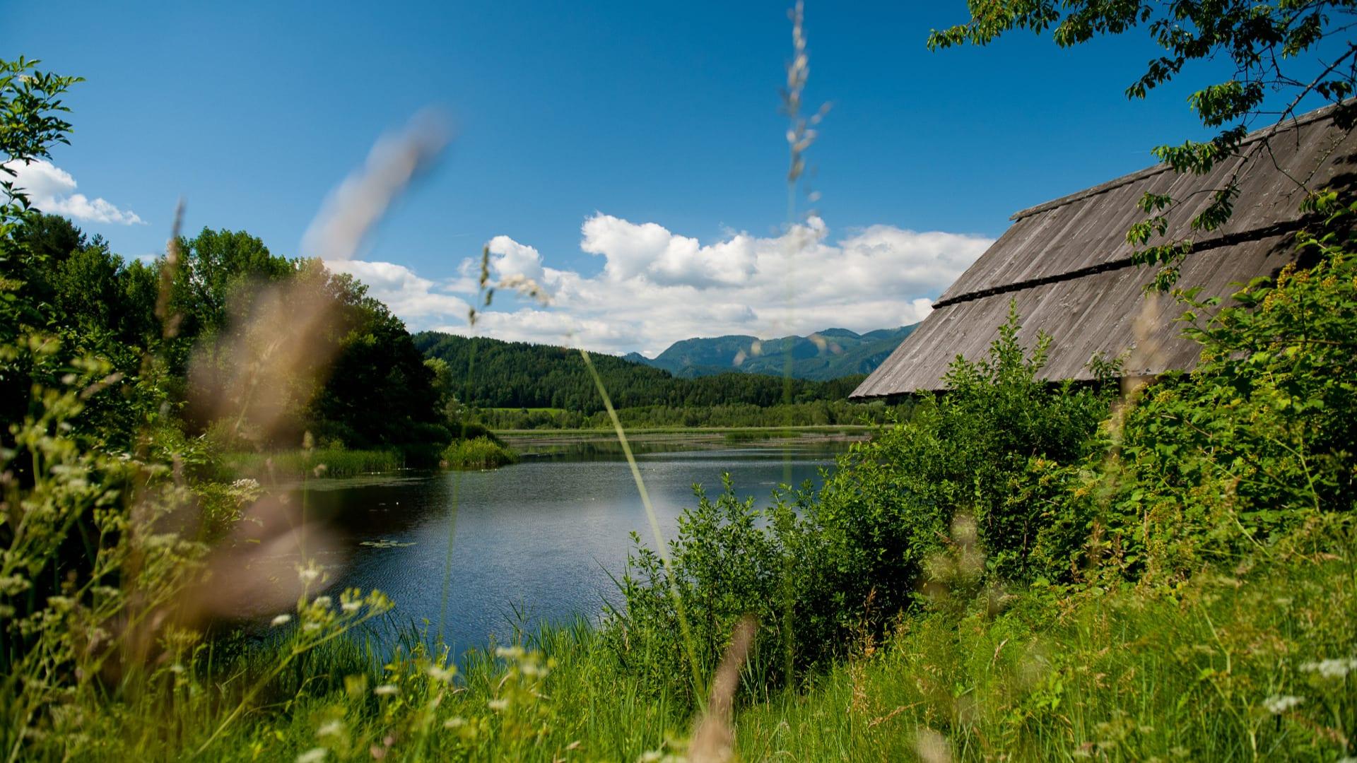 Sablatingmoor-Turnersee-wandern-im-naturparadies